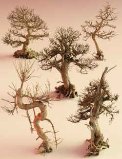 5 Dead Bonsai Trees Volume 2