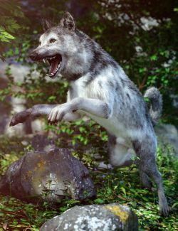 Grey Wolf for Daz Dog 8