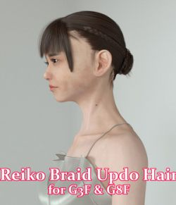 Reiko Braid Updo Hair for G3F & G8F