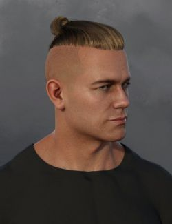 Samurai Style Hair for Dain 8 and Genesis 8 Male(s)