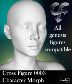 Cross Figure 0003 Character Morph