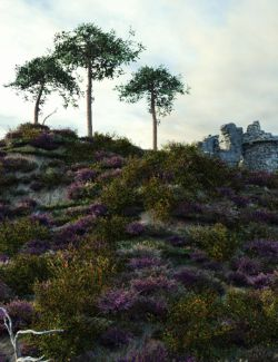 Heath and Moorland Plants and Ecosystems for Vue