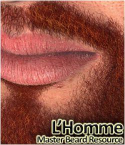 L'Homme- Master Beard Resource