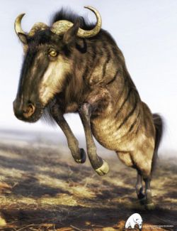 Gnu for DAZ Horse 2 by AM