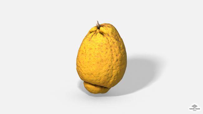 Fruit Citron - Lemon - Photoscanned PBR - Extended Licence