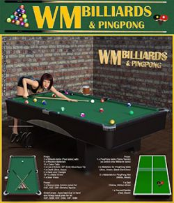 WM Billiards & PingPong