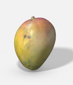 Exotic Fruit Mango- Photoscanned PBR Extended License