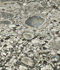 Panoramic Texture Resource: Stonefoundation 01