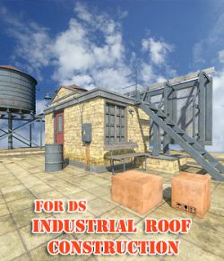 Industrial Roof Construction for DS