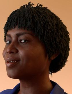 dForce Oso Textured Hair for Genesis 8 Female