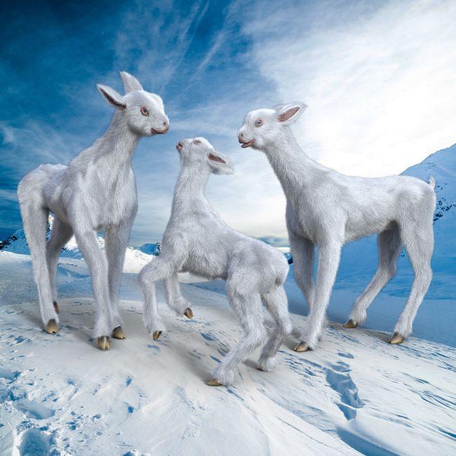 Midnight Creature 02 Snow Llama