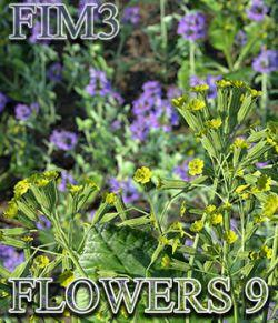 Flinks Instant Meadow 3 - Flowers 9