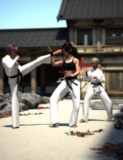 Kyokushin Karate Pose Pack for Genesis 8