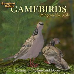 SBRM Gamebirds Vol 3
