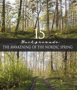 The Awakening Of The Nordic Spring