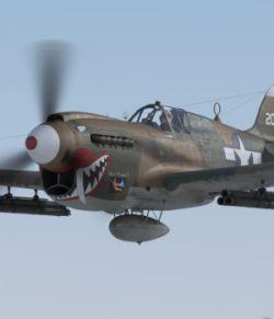 'Snub-nosed' P-40 Warhawk