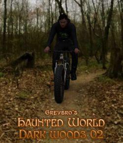 Greybro's Haunted World - Dark Woods Path 02 HDRI
