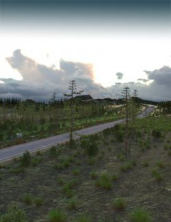 1stB-Long Stretch of Forested Road Add-On