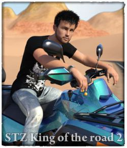 STZ King of the road 2