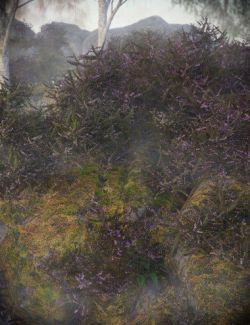 Heather- Heath and Moorland Plants for Daz Studio