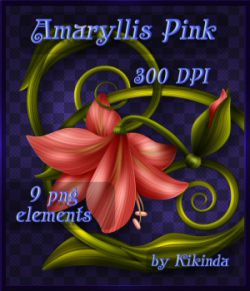 Amaryllis Pink Decor Elements Ornaments