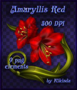 Amaryllis Red Decor Elements
