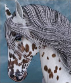 Appaloosa Overlays for the HiveWire Horse