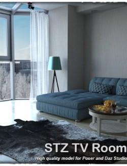 STZ TV Room
