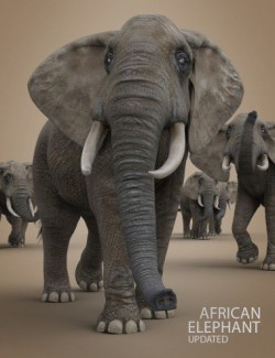 African Elephant Updated