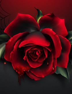 Moonbeam's Vampire Roses