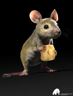 Mouse by AM
