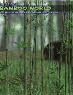 Photo Plants: Bamboo World