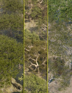 Low Resolution Tropical Trees and Shrubs