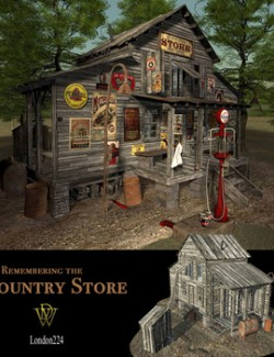 MS20 Country Store Phase 2 Obj & fbx - Extended License