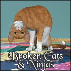 Broken Cats and Ninjas