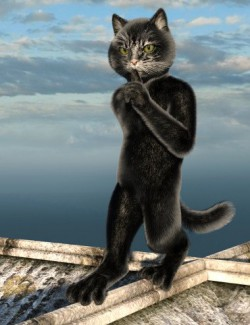 Black Cat Fur and Texture Addon for Catoon