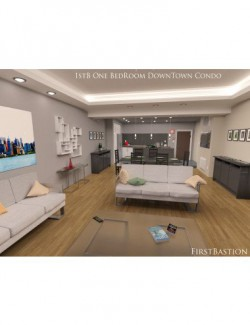 1stB One Bedroom Downtown Condo Apartment