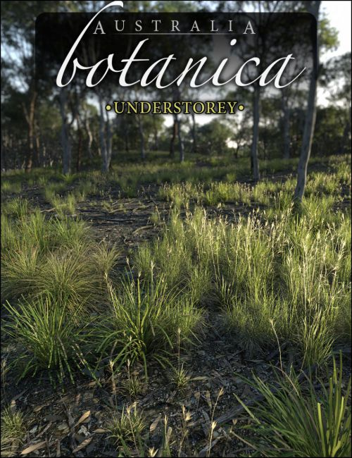Australia Botanica - Understorey