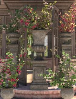 Garden Flowers - Fushia Bushes