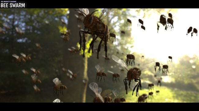 3D Insect Fauna: Bee Swarm