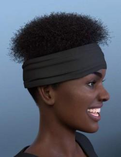 Artisan Hair for Genesis 8 Females
