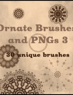Ornate Brushes and PNGs 3