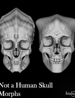 Not a Human Skull Morphs