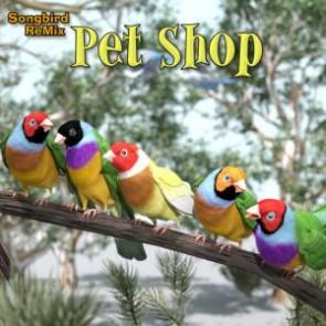 SBRM Pet Shop