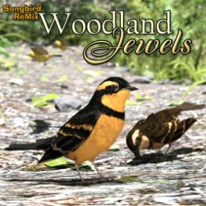 SBRM Woodland Jewels