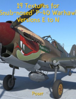 Textures for Snub-nosed P-40 Warhawk