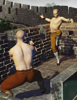 KungFu Poses for Genesis 8 Males