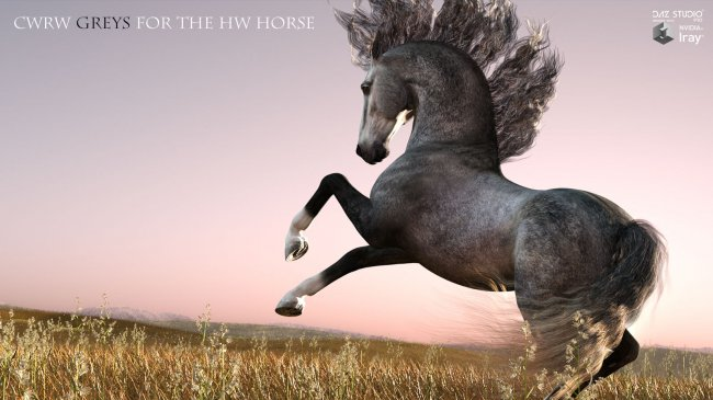 CWRW Greys and Rosy Greys for the HW Horse