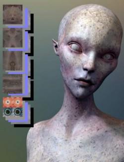 Merchant Resource: Creature Skin