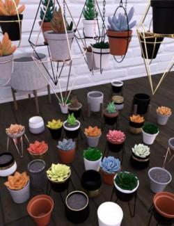 Modern City Indoor Garden Props
